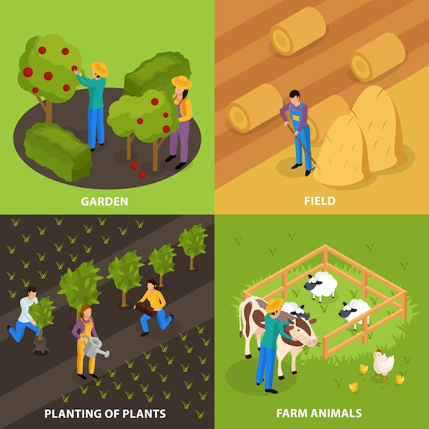 Colourful outdoor compositions of household and farmstead activities Free Vector