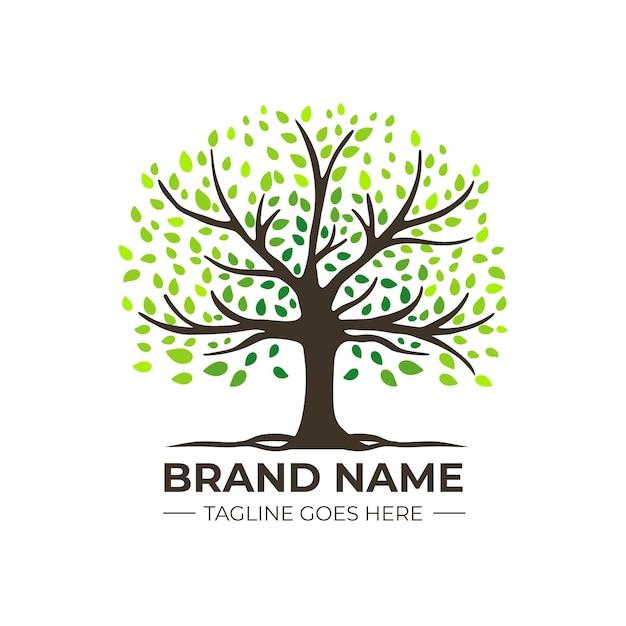 Company nature tree logo template gradient green coloured Premium Vector