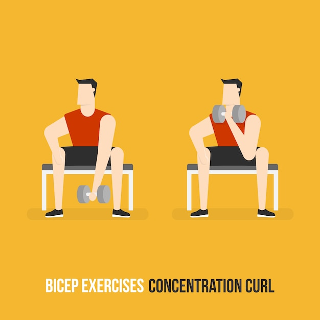 Concentrational curl demostration Free Vector