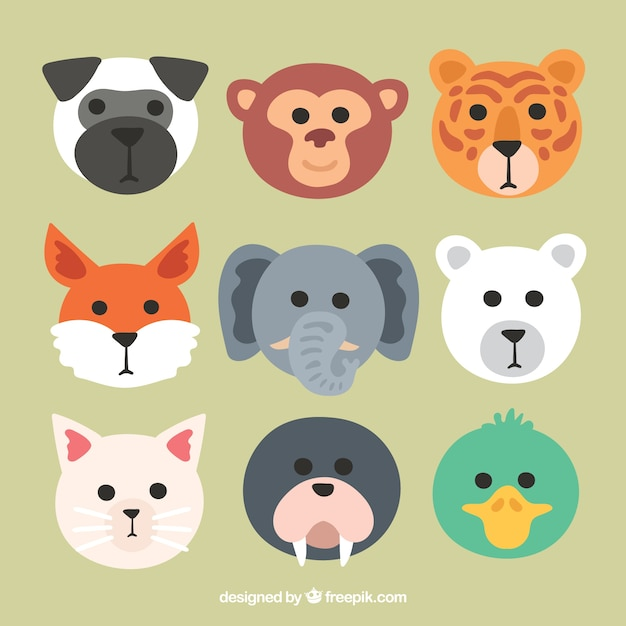 Cool pack of animal faces