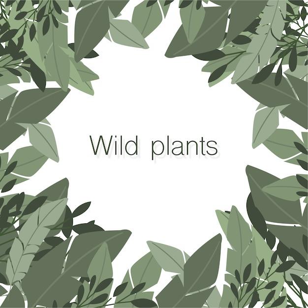 中心にcopyspaceを持つ野生植物の素敵な構成 無料ベクター