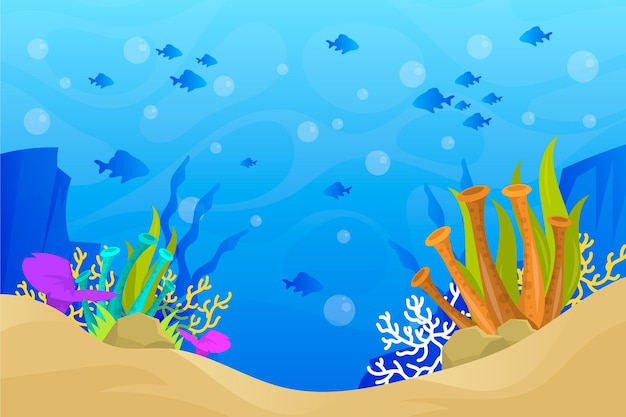 Corals and sand background for online video conferencing Premium Vector