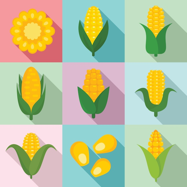 Corn set, flat style Premium Vector
