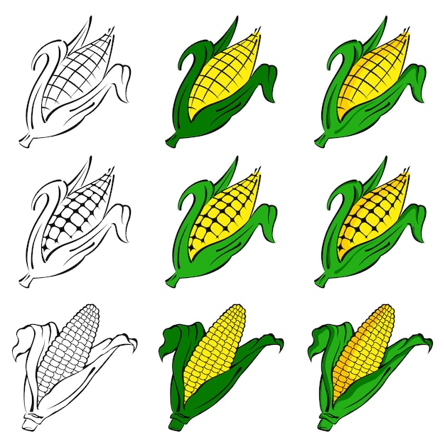Corn vector set Premium Vector
