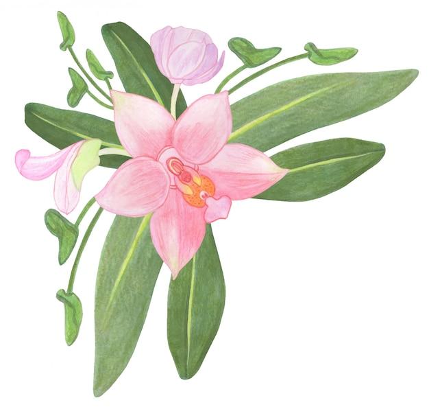 水彩ピンクの蘭の花と葉のコーナー構成 Premiumベクター