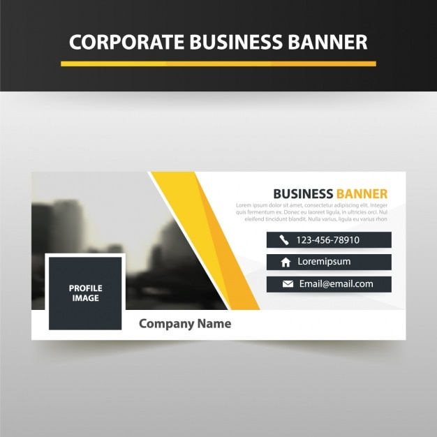 Corporate lawyer cover