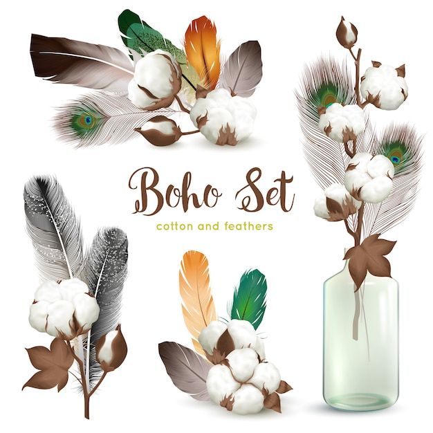 Cotton bolls feathers boho set Free Vector