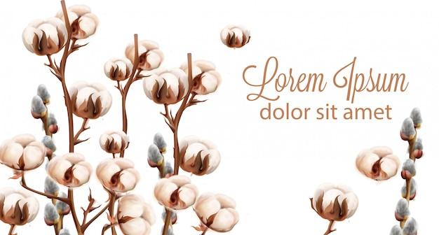 Cotton flowers background watercolor Premium Vector