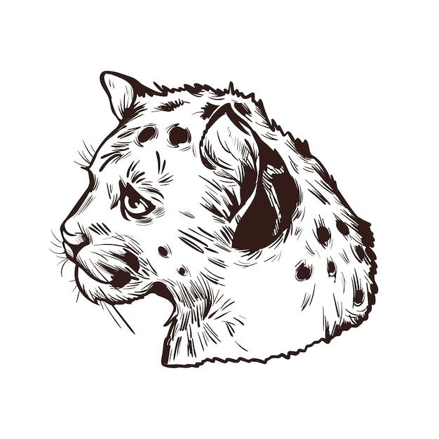 Ребенок-пума, портрет экзотического животного, изолированных эскиз. рисованной иллюстрации. Premium векторы