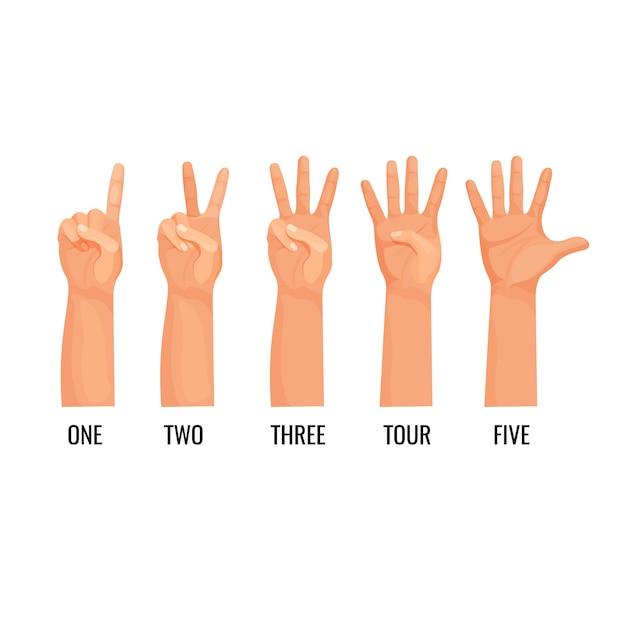 手を数えると数字が表示され、1、2、3、4、5を数えます。指のアイコンを示す手。非言語言語の助けを借りて数える人 Premiumベクター