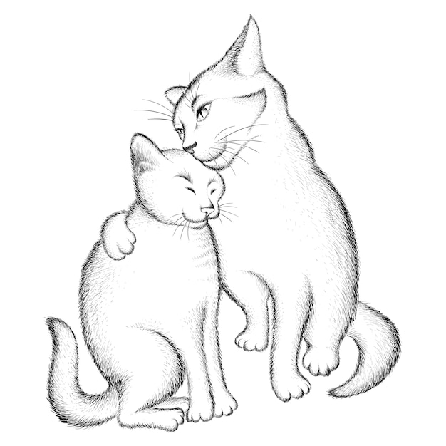 Couple of lovers of cats. Premium Vector