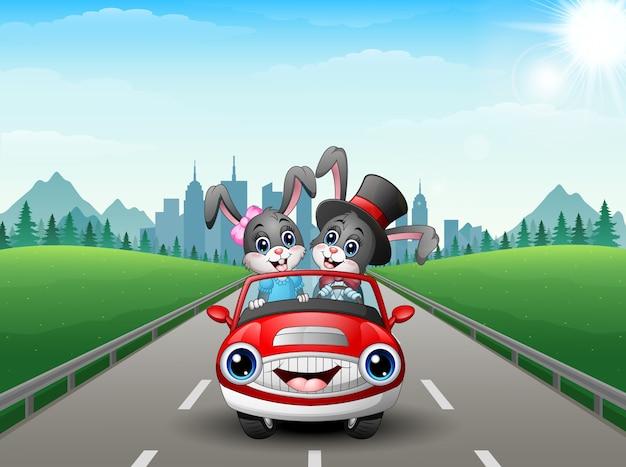 カップル、ウサギ、漫画、車、都市、背景 Premiumベクター
