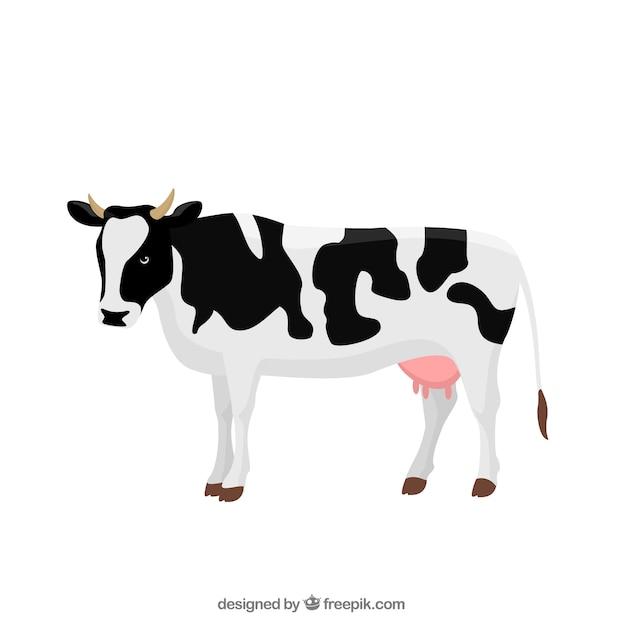 Cow illustration Premium Vector