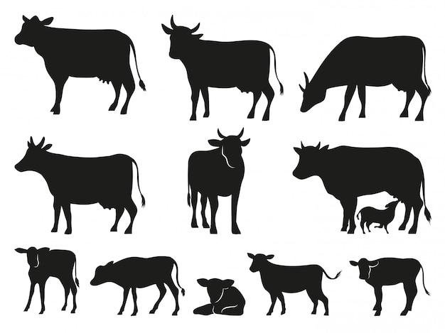 Cow silhouette. black cows and calf mammal animals  icons set Premium Vector