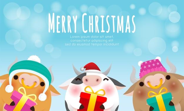 Корова в рождественских шапках и подарках Premium векторы