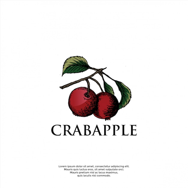 Шаблон логотипа ручной работы crabapple Premium векторы