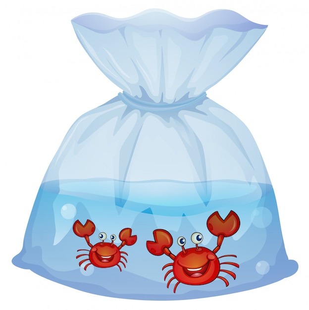 Crabs inside the plastic Free Vector