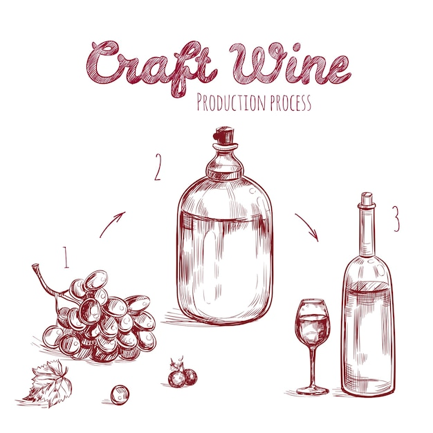 Craft drink hand drawn concept Free Vector