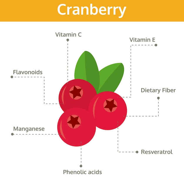 Cranberry nutrient of facts and health benefits Premium Vector