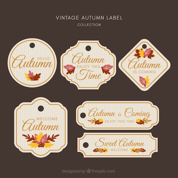 Creative autumn label collection Free Vector