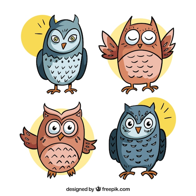 Creative cartoon owl collection