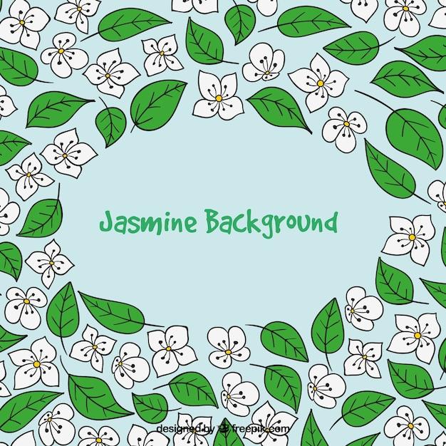 Creative jasmine background Free Vector