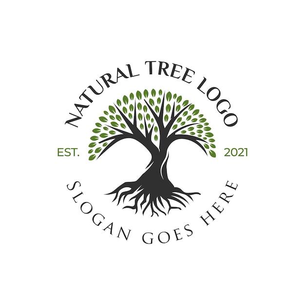 Креативный дизайн логотипа жизни дерева, значок дерева, дизайн элементов зеленого сада Premium векторы
