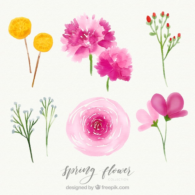 Creative watercolor spring flower set Free Vector