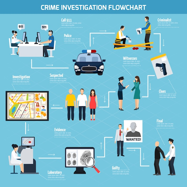 Crime investigation flat flowchart Free Vector