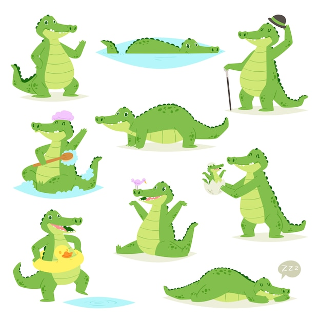 Crocodile  crocodilian character of green alligator sleeping or playing illustration animalistic childish setof funny predator  on white background Premium Vector