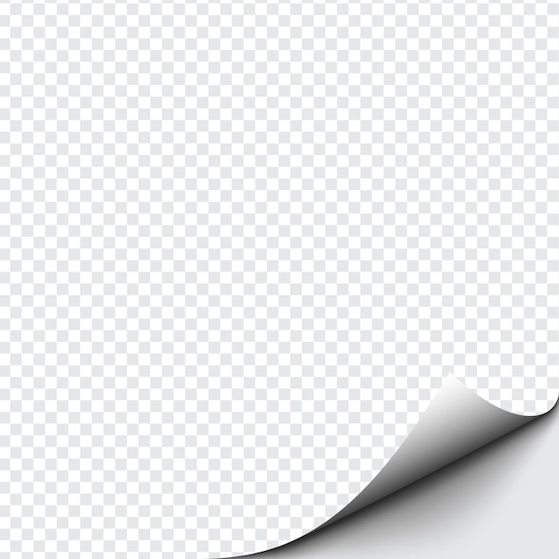 Curled corner of paper on transparent background with soft shadows, realistic paper page mock up. Premium Vector