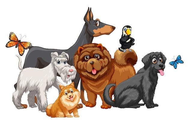 Gruppo di cane animale carino isolato Vettore gratuito