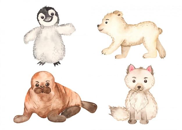 Симпатичные арктические животные. песец, пингвин, белый медведь, морж Premium векторы