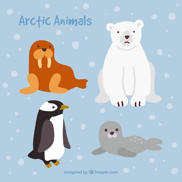 Cute arctic animals Free Vector