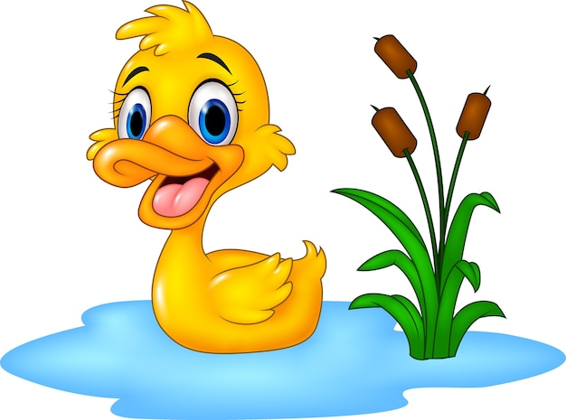 Cute baby duck floats on water Premium Vector