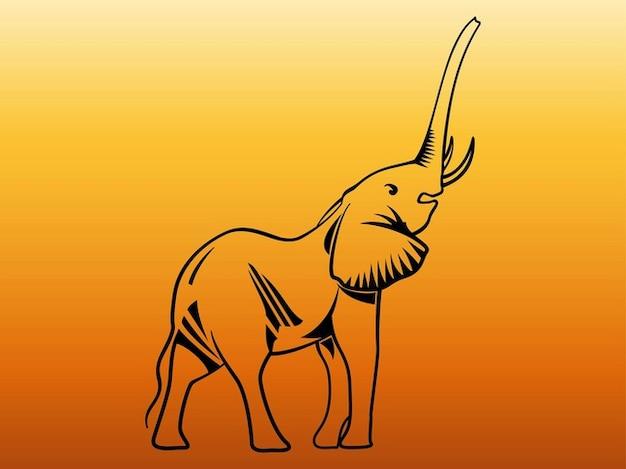 Cute baby elephant wildlife graphics Free Vector