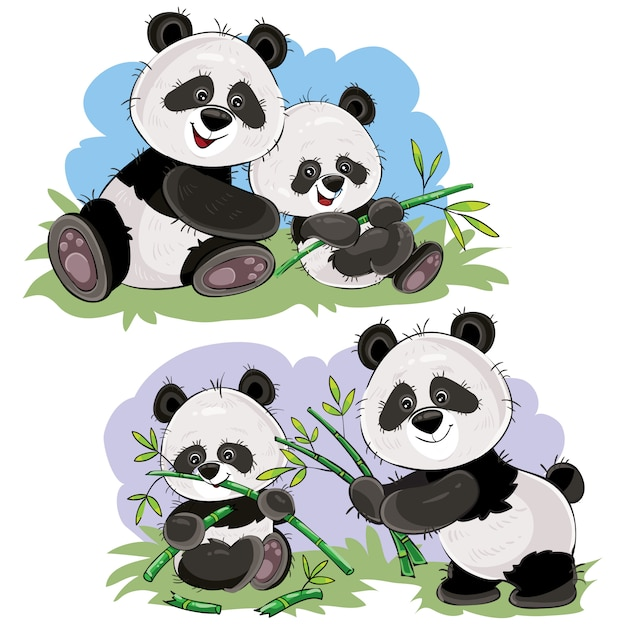 Cute Baby Panda Bear And Its Mother Playing On Grass Eating Bamboo Stems And Leaves Premium Vector