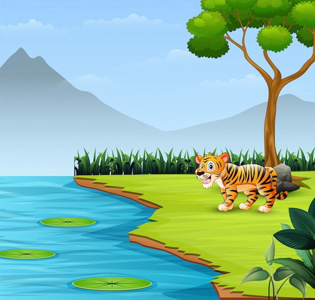 Cute baby tiger roars by the river Premium Vector