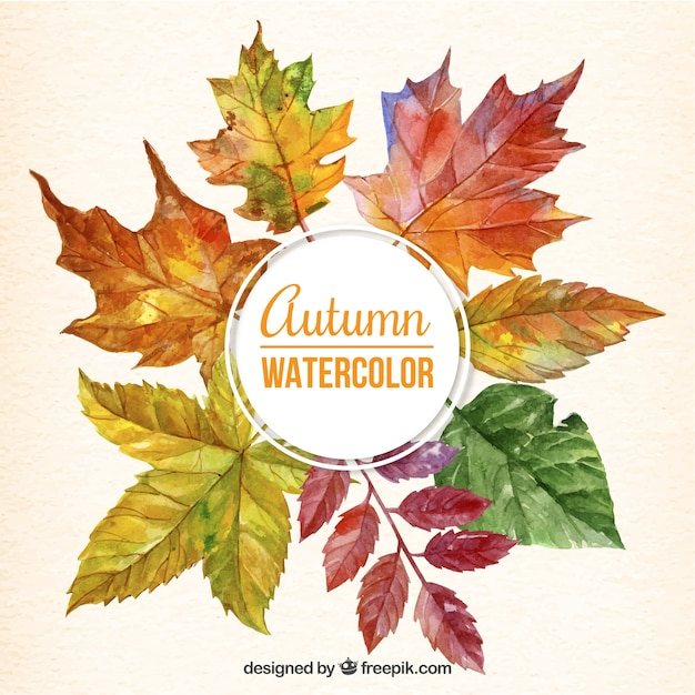 Cute background of watercolor autumnal leaves  Free Vector