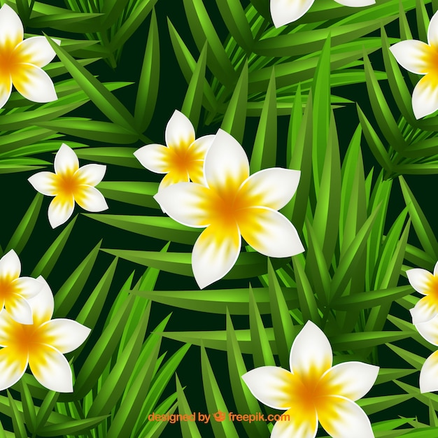 Cute Background With Jasmine Flowers Vector Free Download