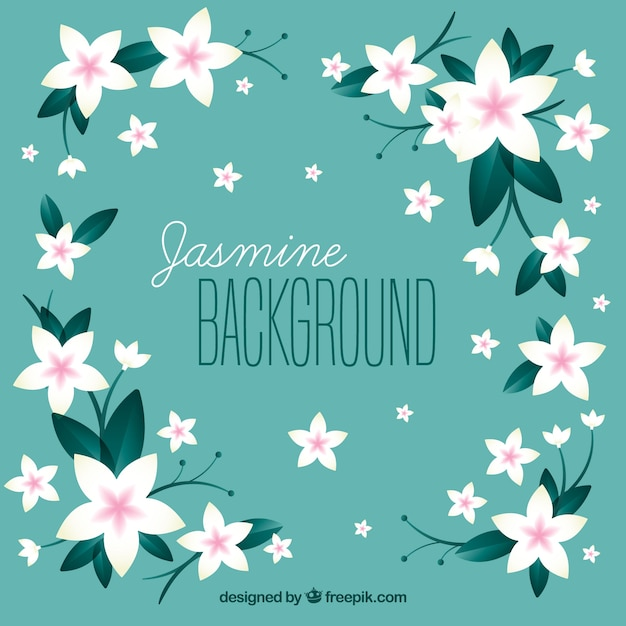 Cute Background With Jasmine Flowers Vector