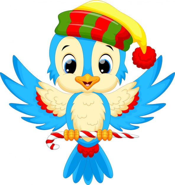 Cute bird wearing a santa hat while carrying candy ...