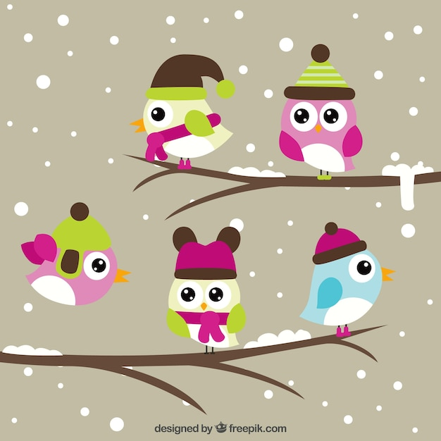 Cute birds of pretty eyes on branches