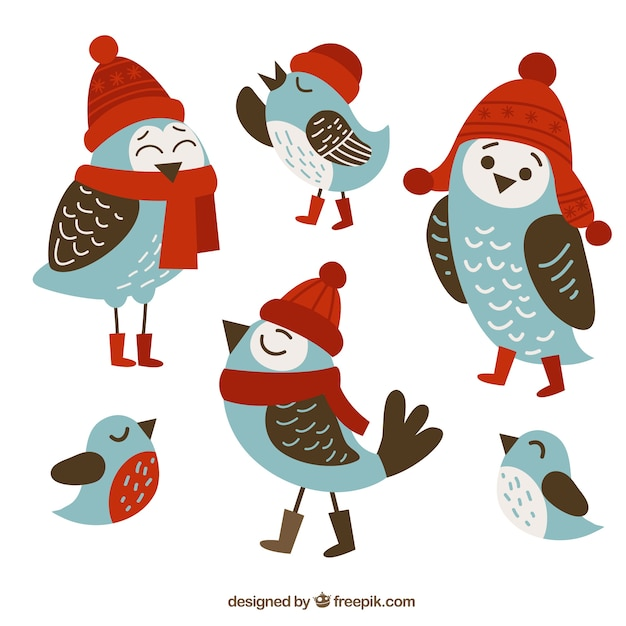 Cute birds with winter clothes