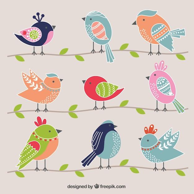 Cute birds Premium Vector