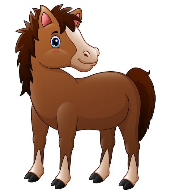 Cute brown baby horse Premium Vector