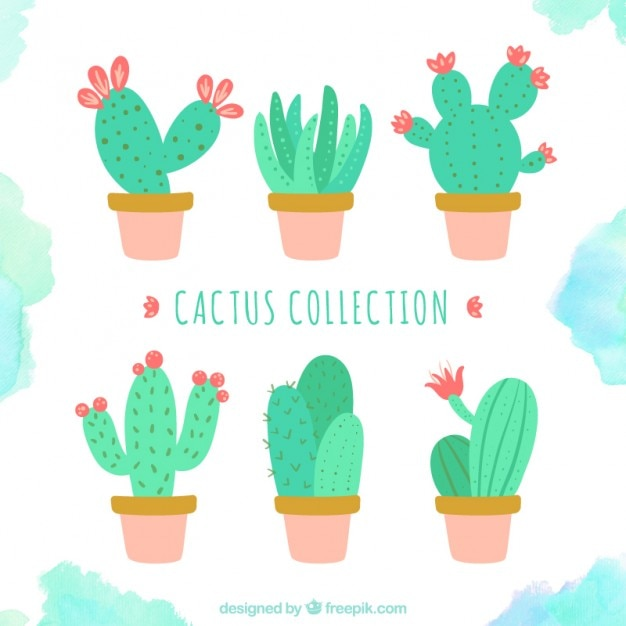 Cute cactus collection Vector | Free Download