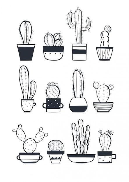 Cute cactus set Premium Vector