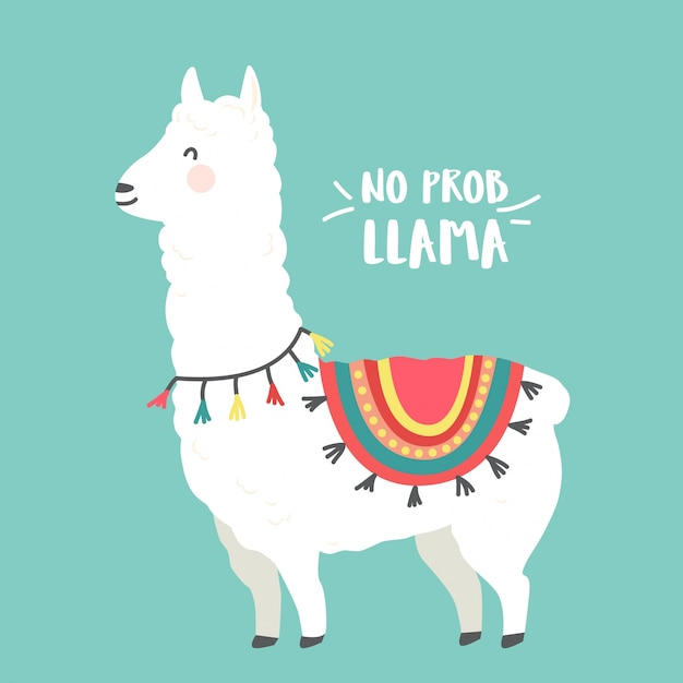 Image result for llama pictures