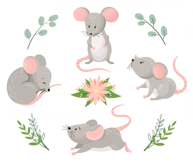 Cute cartoon mouses in different poses with floral elements. vector illustration. Premium Vector